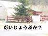 2009sato_986