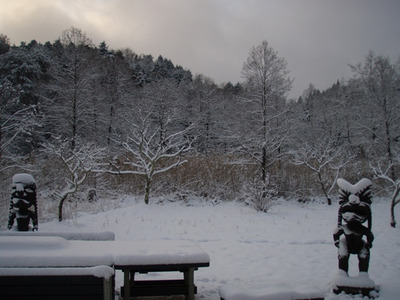 2011_11_340
